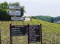 Champagne Trail